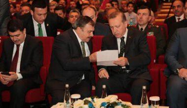 Afyon'a 10 bin adet çınar dikilecek