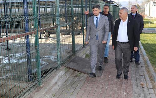 """""""Hayvan Bakımevi, Türkiye'ye örnek"""""""