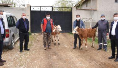 Yardım kampanyasına hayvanlarını satarak bağışta bulundular