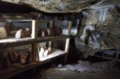 Kadınlar mağarada peynir üretiyor