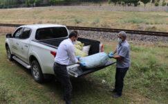 Bu da kaçak  salyangoz  operasyonu: Çuvallarla topladıkları  salyangozları satacaklardı