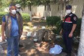 Yaralı halde bulunan geyik yavrusu koruma altına alındı