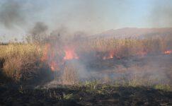 Karamık Gölü'nde büyük yangın