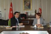 Uysal: Türkiye şimdi devlet krizine doğru ilerliyor